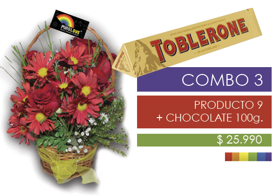 COMBO 3 Producto 9 + Chocolates 100g.